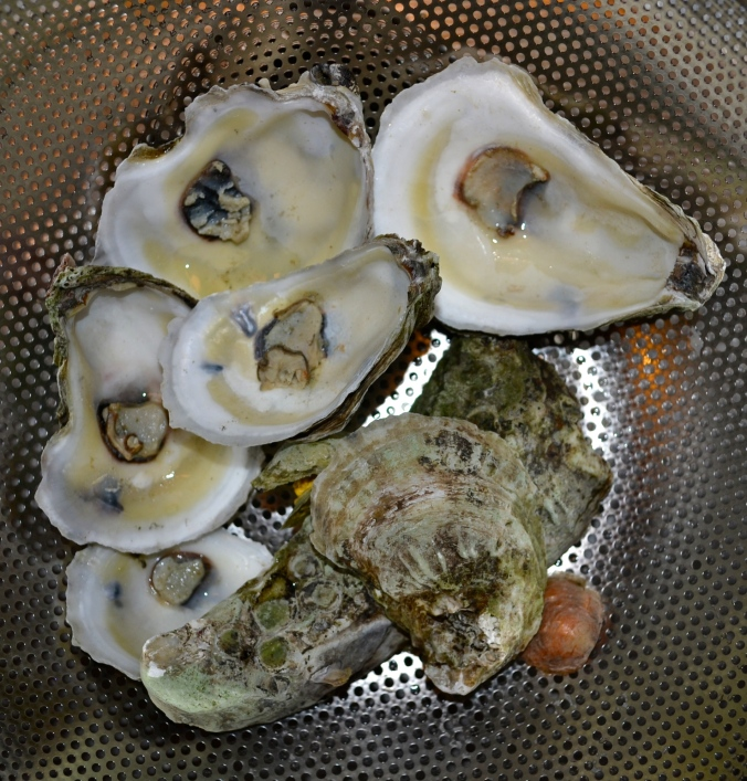 Gold Oyster Dishes from JustSomethingIWhippedUp.com